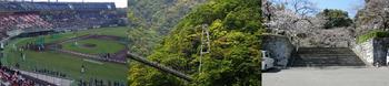 宮崎県見出し画像2.png